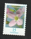 Stamps Europe - Germany -  3203 - Flor, Limnanthes alba