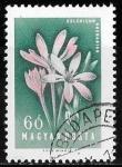 Stamps : Europe : Hungary :  Hungría