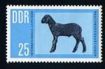 Stamps Germany -  borrego