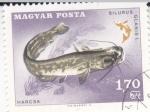 sello : Europa : Hungría : PEZ- SILURUS