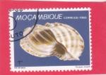de Africa - Mozambique -  CARACOLA