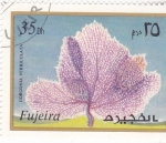 de Asia - Emiratos Árabes Unidos -  CORAL