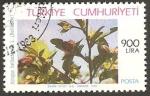 Stamps Turkey -  flora