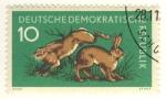 Sellos de Europa - Alemania -  conejos