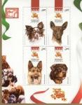 Stamps of the world : Mexico :  Exposición mundial canina