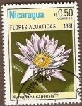 Sellos de America - Nicaragua -  Flores  acu�ticas