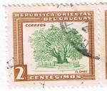 Sellos del Mundo : America : Uruguay : El  Ombú