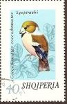 Sellos de Europa - Albania -  Pájaro