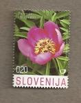 Stamps Slovenia -  Flora del karst