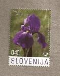 Sellos de Europa - Eslovenia -  Flora del karst