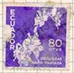 Stamps : America : Ecuador :  orquideas