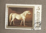 Stamps Russia -  Museo equestre de Moscú