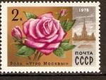 Sellos de Europa - Rusia -  Rosa