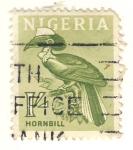 Stamps Africa - Nigeria -  Hornbill