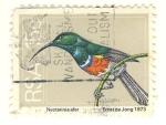 Sellos de Africa - Sudáfrica -  colibri