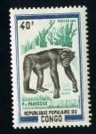 Stamps of the world : Republic of the Congo :  Chimpance