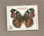 Stamps Africa - Rwanda -  Mariposa: Precis octavia