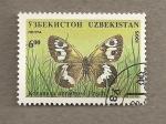 Stamps Uzbekistan -  Mariposa Karanasa abromovi