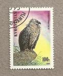 Stamps Asia - Kyrgyzstan -  Ave de presa Gups himalayensis