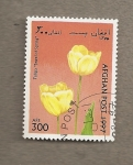 Stamps : Asia : Afghanistan :  Tulipán
