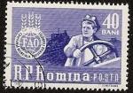 Sellos de Europa - Rumania -  FAO - campaña mundial lucha contra el hambre