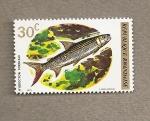 Stamps Africa - Rwanda -  Pez Hidrocyon forskalii