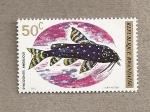 Stamps Africa - Rwanda -  Pez Synodontis angelicus
