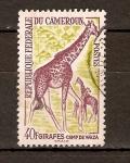 Stamps Africa - Cameroon -  GIRAFA
