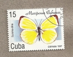 Stamps Cuba -  Mariposas cubanas:Eurema dina