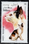 Stamps : Asia : Afghanistan :  Gatos