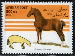 Stamps : Asia : Afghanistan :  Caballos