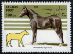 Stamps Asia - Afghanistan -  Caballos