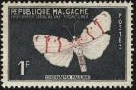 Sellos del Mundo : Africa : Madagascar : Republica de Malgache. Mariposa Chionaema pauliani. 1960 1 franco