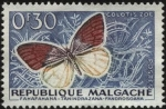 Stamps Madagascar -  Repúlica de Malgache. Mariposa Colotis zoe.