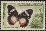 Sellos del Mundo : Africa : Madagascar : Repúblca de Malgache. Mariposa Hypolimnas dexithea.