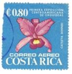 Stamps Costa Rica -  Primera exposicion de orquideas Cattleya skinneri