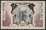 Sellos del Mundo : Africa : Madagascar : República de Malgache. Mariposa Salamis duprei.