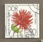 Sellos de Europa - Alemania -  Dalia var. Enzett Carola