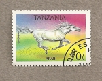 Stamps Tanzania -  Caballo Arabe