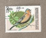 Stamps Africa - Togo -  Ave Fringilla coelebs