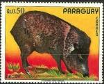 Stamps Paraguay -  Pecari
