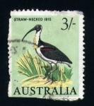 Stamps Australia -  ibis