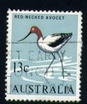 Stamps Australia -  Red-necked avocet
