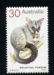Stamps Australia -  brushtail possum