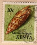 Stamps Kenya -  1971 Conchas marinas: Mitra episcopalis