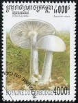 Stamps Asia - Cambodia -  Setas