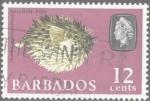 Sellos del Mundo : America : Barbados : Diodon holocanthus, pez erizo, pez globo.