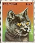 Stamps Paraguay -  Gatos