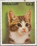 Stamps Paraguay -  Gatos III