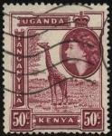 Stamps Africa - Kenya -  Kenia, Uganda, Tanganika, girafa.